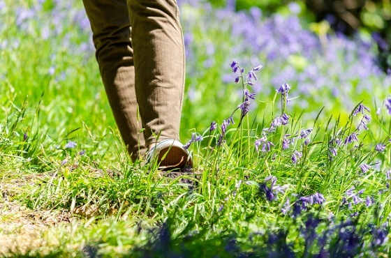 Step into Spring 3.6.19
